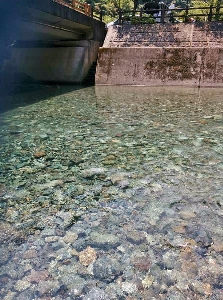神之川キャンプ場の川遊びエリアの浅瀬部分
