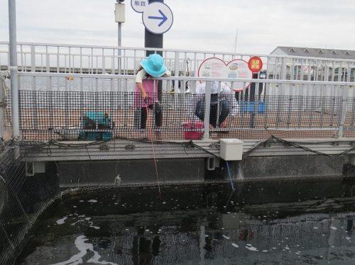 八景島シーパラダイス「うみファーム」でマアジを釣る幼児(4歳)