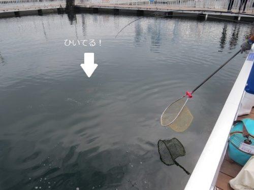 八景島シーパラダイス「うみファーム」でマダイ釣りに挑戦