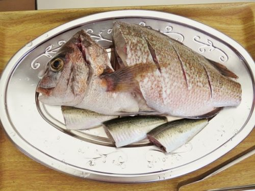 八景島シーパラダイス「うみファーム」で釣り上げ、自分で塩焼きにするマダイ