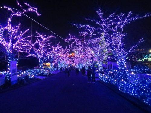 よみうりランドのイルミネーションイベント「ジュエルミネーション」で青く彩られたタンザナイト・プロムナード