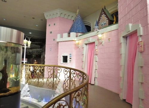 蓼科アミューズメント水族館にあるピンクのお城風建物