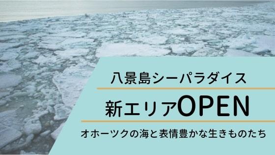 八景島シーパラダイスの新エリア「オホーツクの海と表情豊かな生きものたち」イメージ
