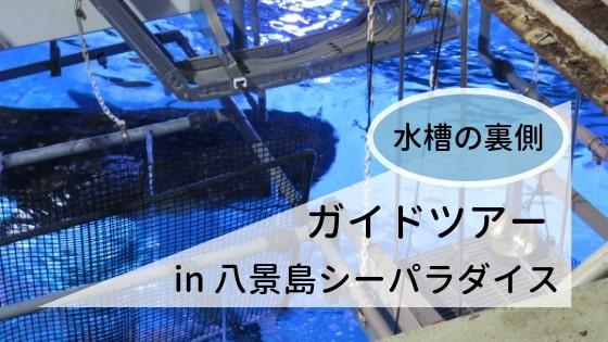 八景島シーパラダイスのバックヤードツアー「お魚水槽うらがわガイドツアー」の参加レポート