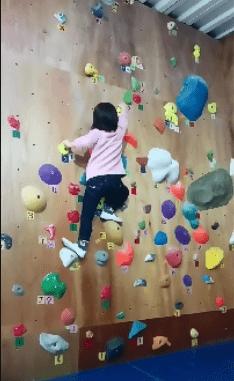 ボルダリングをする幼児
