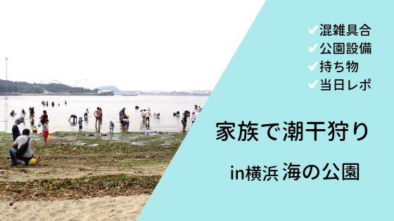 横浜「海の公園」で潮干狩りを楽しむためのポイント総まとめ