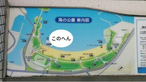 横浜「海の公園」の潮干狩りで場所取りしたところ