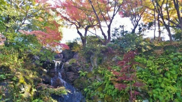 HANA・BIYORI ハナビヨリ空見の丘を流れる滝