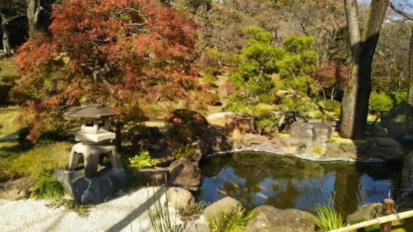 HANA・BIYORI ハナビヨリ彩りの小路にある日本庭園