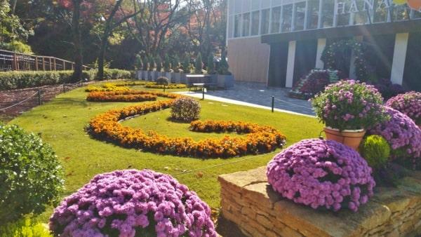 HANA・BIYORI ハナビヨリ彩りの小路に咲く季節の花