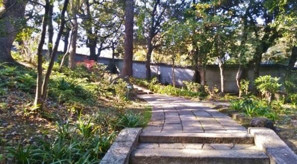 HANA・BIYORI ハナビヨリ聖なる森のコケの庭