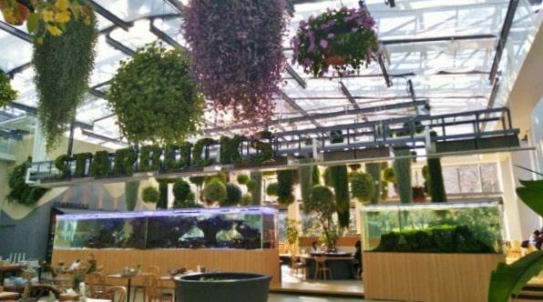 HANA・BIYORIハナビヨリの温室内にあるアクアリウムとカフェスペース